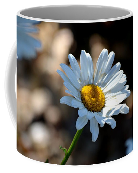 Daisy Coffee Mug featuring the photograph Tea Stained Daisy by Maria Urso