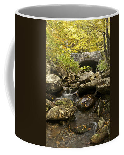 Autumn Coffee Mug featuring the photograph Tennessee Stone Bridge 6062 by Michael Peychich
