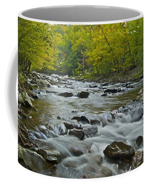 Autumn Coffee Mug featuring the photograph Tennessee Stream 6031 by Michael Peychich