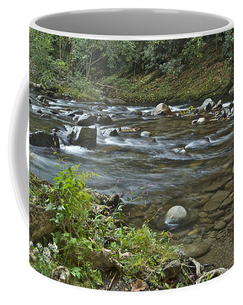 Autumn Coffee Mug featuring the photograph Tennessee Stream 6049 by Michael Peychich