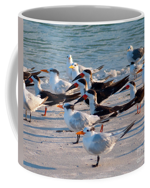 Terns Coffee Mug featuring the photograph Terns by Stephen Whalen