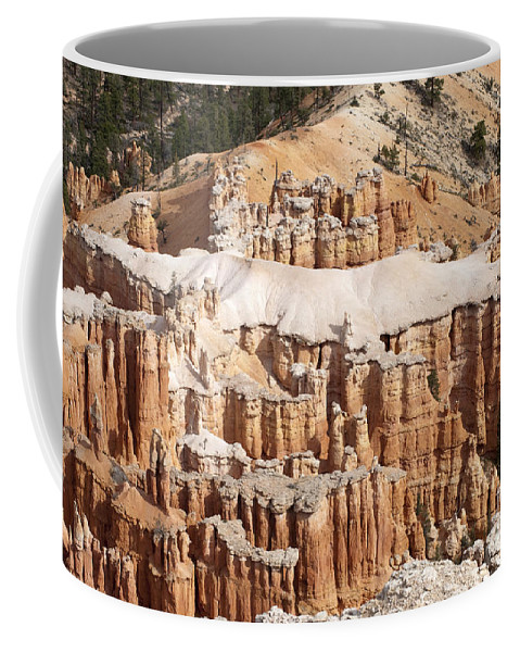 Landscape Coffee Mug featuring the photograph The Allligator by Sandra Bronstein