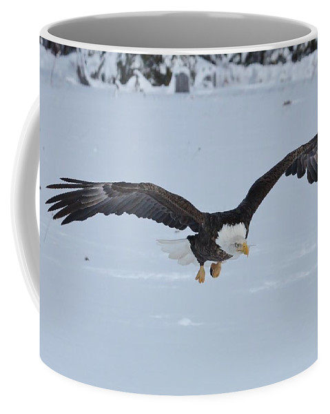 Bald Eagle Coffee Mug featuring the photograph The Attack by Teresa McGill