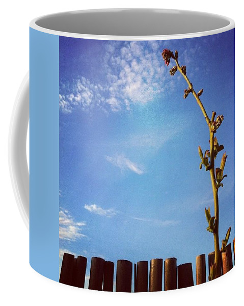 Blue Coffee Mug featuring the photograph The Blueberry Bush by Katie Cupcakes
