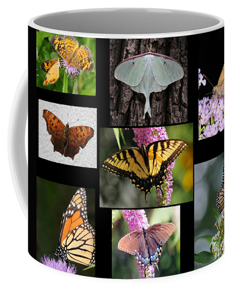 Butterfly Coffee Mug featuring the photograph The Butterfly Collection by Paul Ward