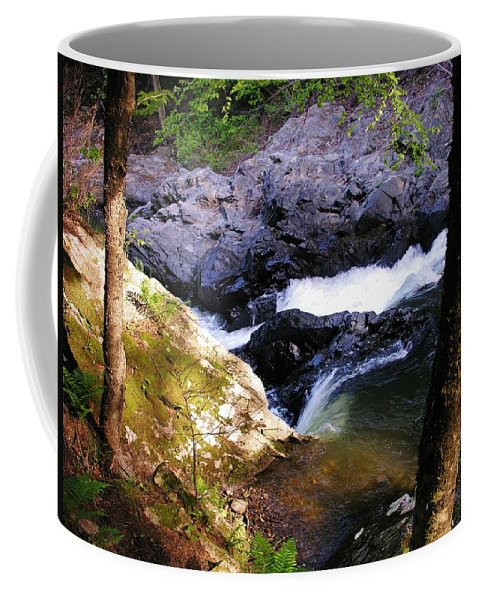 Water Chutes Coffee Mug featuring the photograph The Chutes At Union Village by Sherman Perry