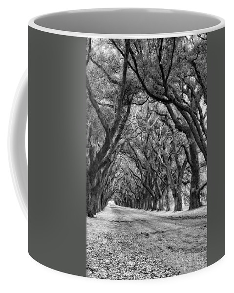 Evergreen Plantation Coffee Mug featuring the photograph The Deep South Monochrome by Steve Harrington