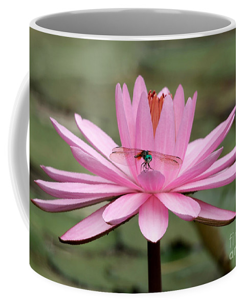 Aquatic Coffee Mug featuring the photograph The Dragonfly And The Pink Water Lily by Sabrina L Ryan