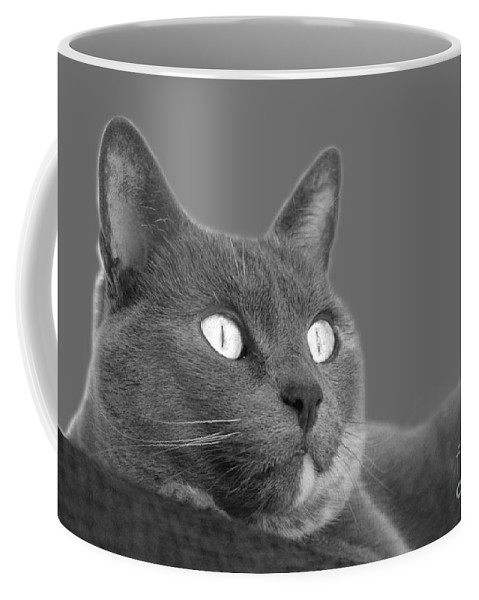 Cat Coffee Mug featuring the photograph The Eyes Have It by Nareeta Martin