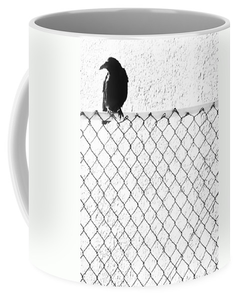 Crow Coffee Mug featuring the photograph The Fence That Follows by The Artist Project