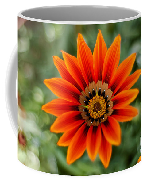 Flower Coffee Mug featuring the photograph The Focused Eye by Syed Aqueel