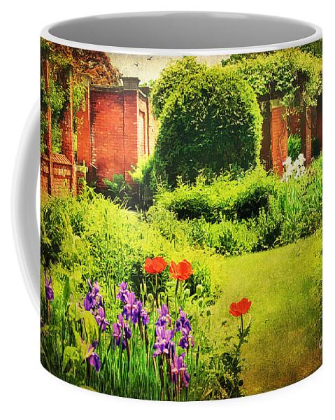 Backyard Coffee Mug featuring the photograph The Gardens by Darren Fisher