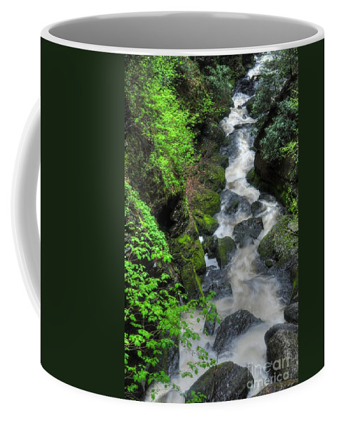 Waterfalls Coffee Mug featuring the photograph The Gorge by Paul Ward