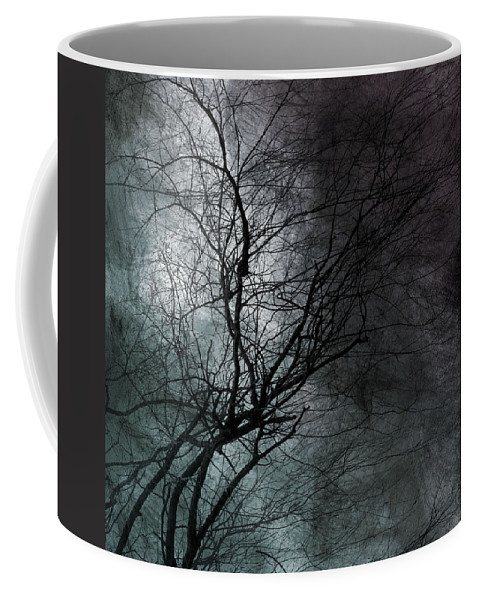 Window Framed Prints Coffee Mug featuring the photograph The Haze Of The Moon by The Artist Project