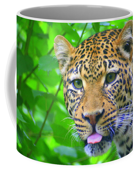Tongue Coffee Mug featuring the photograph The Leopard's Tongue by Laurel Talabere