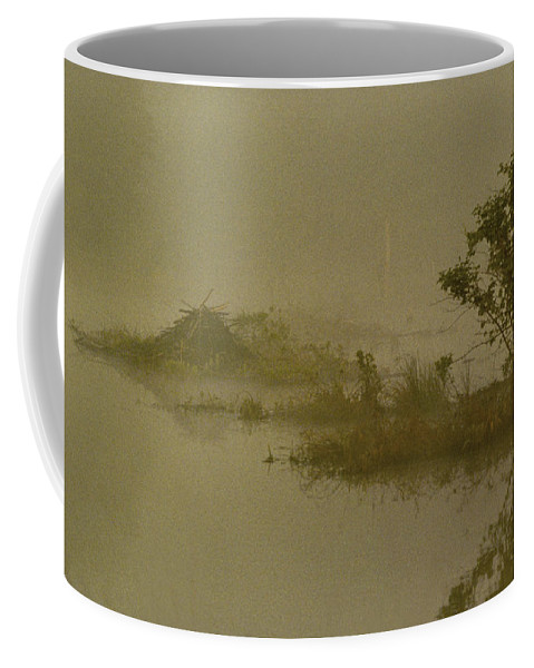 Pond Coffee Mug featuring the photograph The Lodge In The Mist by Skip Willits
