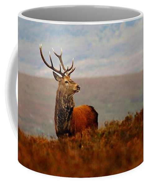 Red Deer Stag Coffee Mug featuring the photograph The Monarch by Gavin Macrae
