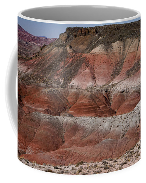 Arizona Coffee Mug featuring the photograph The Painted Desert 8018 by James BO Insogna