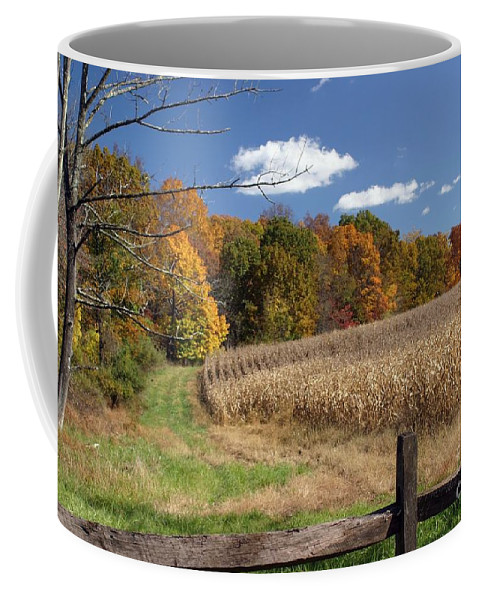 Landscape Coffee Mug featuring the photograph The Road Less Traveled by Living Color Photography Lorraine Lynch