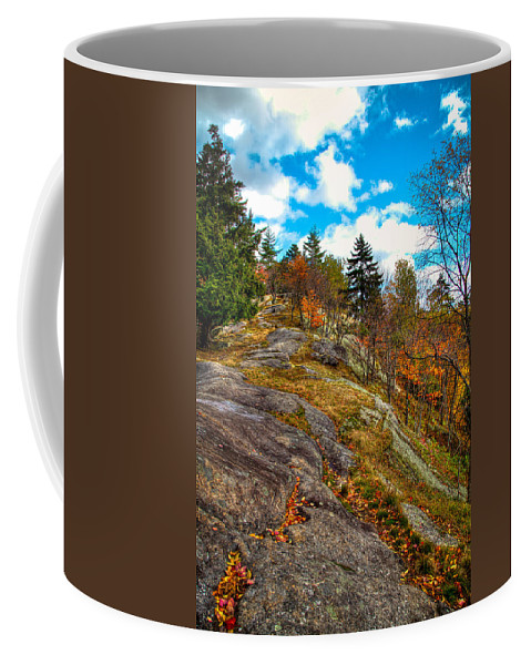 Adirondack's Coffee Mug featuring the photograph The Rocks Above Eagle Bay by David Patterson