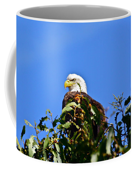 Birds Coffee Mug featuring the photograph The Sentinel by Diana Hatcher