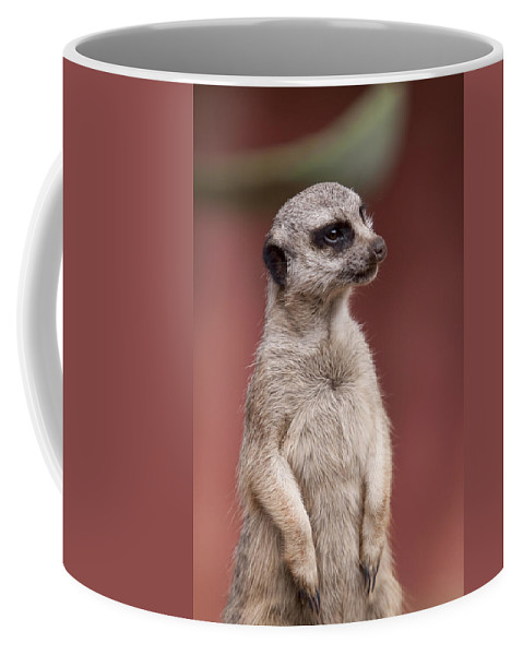 Meercats Coffee Mug featuring the photograph The Sentry by Michelle Wrighton