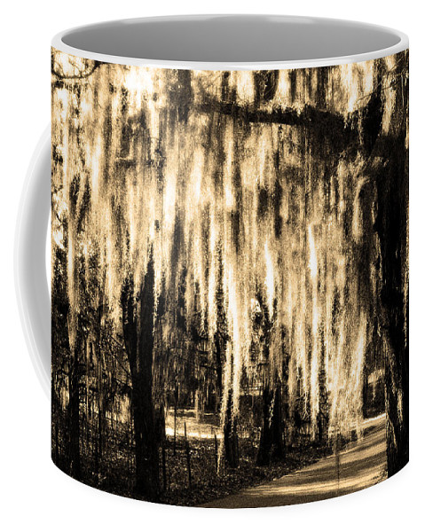 Spanish Moss Coffee Mug featuring the photograph The Spanish Moss by Mike Nellums