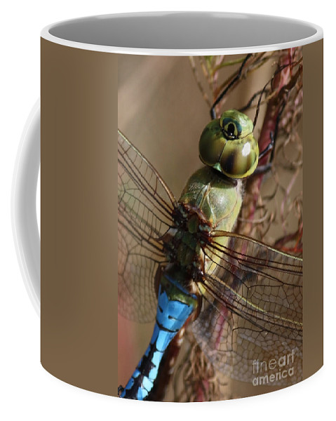 Dragonfly Coffee Mug featuring the photograph The Thorax by Carol Groenen