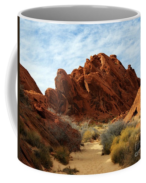 Fire Canyon Coffee Mug featuring the photograph The Trail Through The Valley by Vivian Christopher
