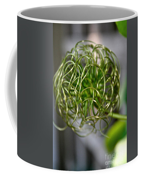 Outdoors Coffee Mug featuring the photograph The World Of Clematis by Susan Herber
