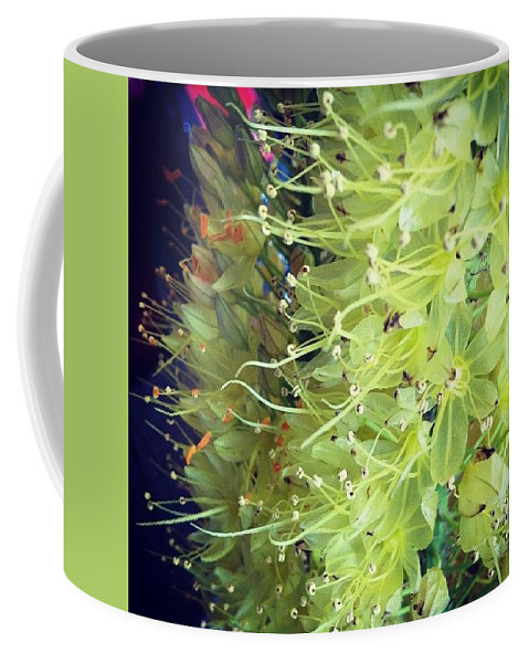 Flower Coffee Mug featuring the photograph These Flowers Were On Their Way Out by Katie Cupcakes