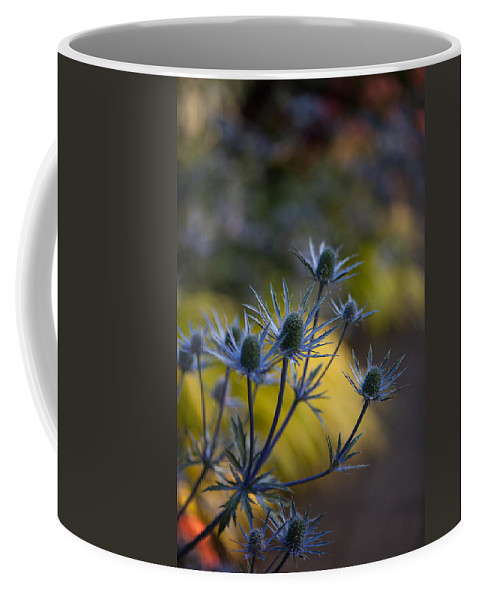 Flower Coffee Mug featuring the photograph Thistles Abstract by Mike Reid