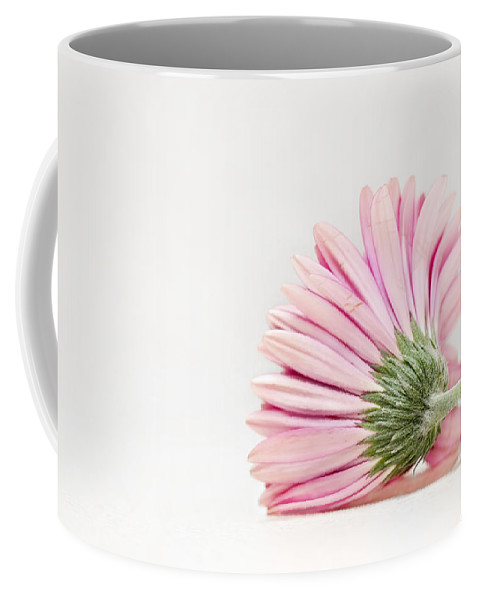 Flower Coffee Mug featuring the photograph Thoughts So Tender by Evelina Kremsdorf