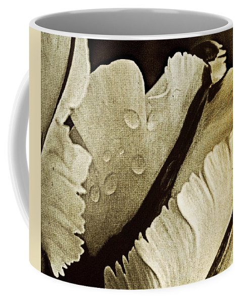Coffee Mug featuring the photograph Three Stripes by Chris Berry