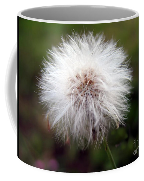 Stamen Coffee Mug featuring the photograph Tiny Dandelion Closeup by Yali Shi