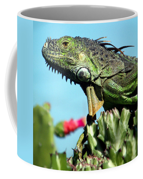 Reptiles Coffee Mug featuring the photograph To The Point by Karen Wiles