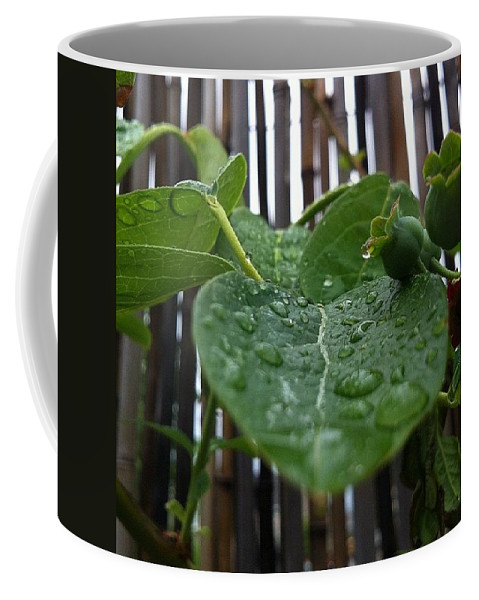 Coffee Mug featuring the photograph Today by Katie Cupcakes