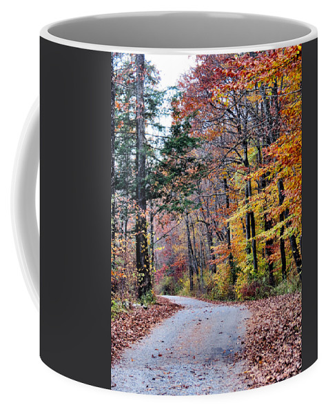 Fall Coffee Mug featuring the photograph Trail Enlightenment by Art Dingo