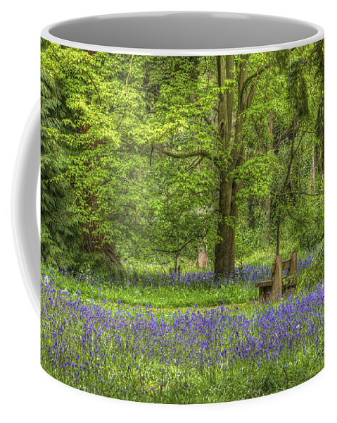 Bambers Coffee Mug featuring the photograph Tranquility by Clare Bambers
