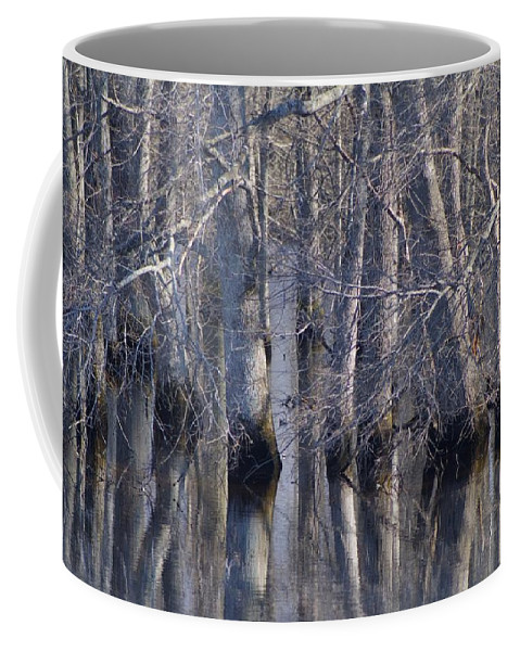 Tree Coffee Mug featuring the photograph Tree Reflection Abstract by Kathy Clark