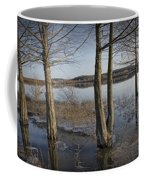 Art Coffee Mug featuring the photograph Trees On Flooded Riverbank No.1001 by Randall Nyhof