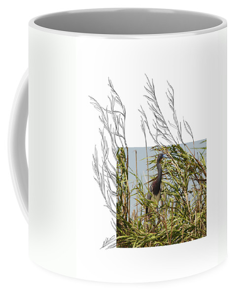 Tricolored Heron Coffee Mug featuring the photograph Tricolored Heron by Andrew McInnes