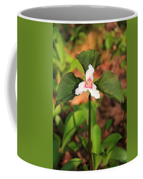Trillium Coffee Mug featuring the photograph Trillium Wildflower by Roupen Baker