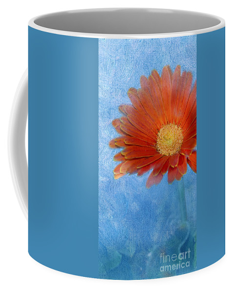 Triptych Coffee Mug featuring the photograph Triptych Gerbera Daisy-one by Betty LaRue