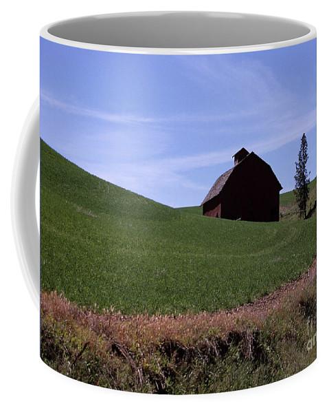 Farmland Coffee Mug featuring the photograph True Country Barn by Sharon Elliott