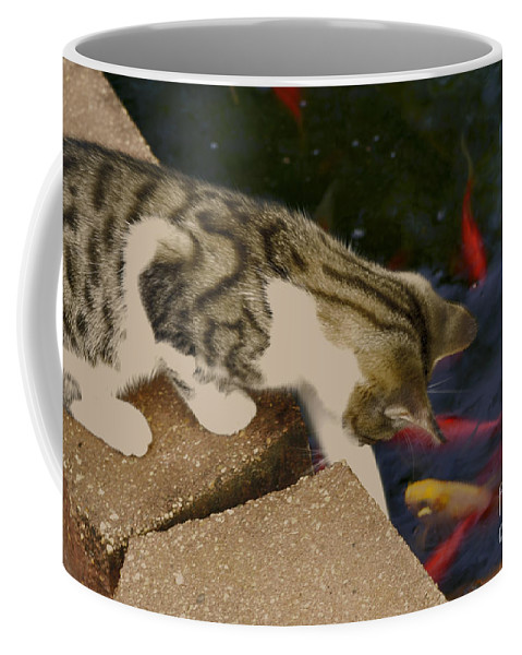 Animal Coffee Mug featuring the photograph Trying To Catch The Fish by Donna Brown