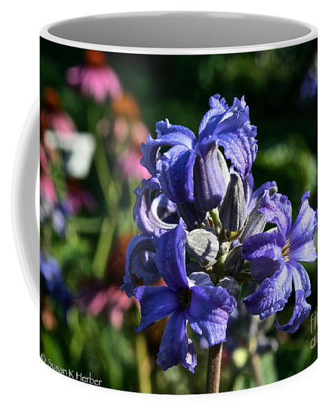 Outdoors Coffee Mug featuring the photograph Tube Clematis Blossoms by Susan Herber