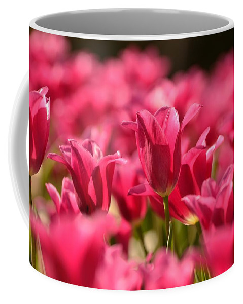 Tulips Coffee Mug featuring the photograph Tulip Bed by Joshua McCullough