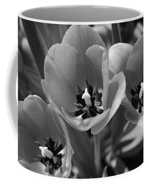Flora Coffee Mug featuring the photograph Tulips In Black And White by Bruce Bley