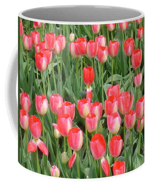 Tulips Coffee Mug featuring the photograph Tulips by Michael Merry